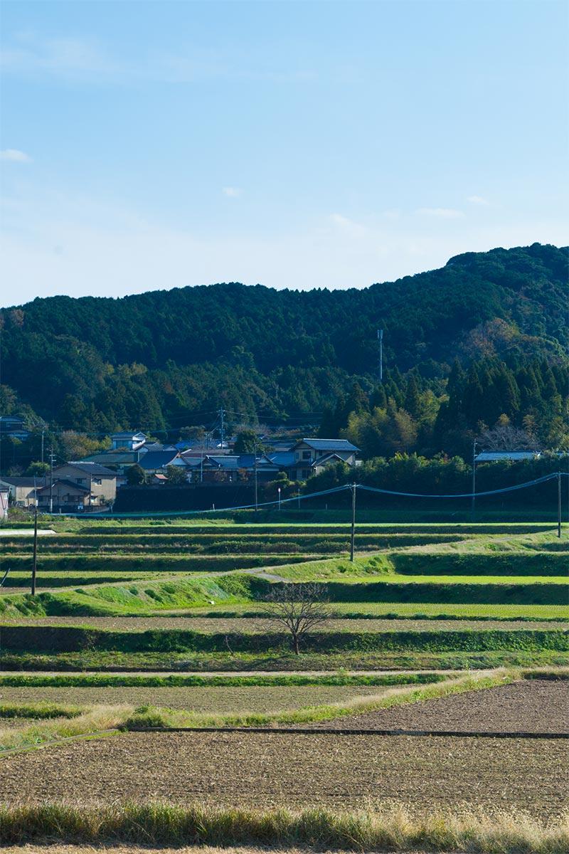 HACHI ARITA JAPAN